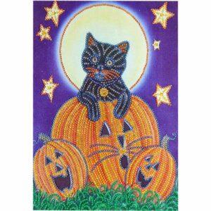 Schwarze Katze und Kürbisse